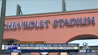 $100 million renovations proposed for Roger Dean Stadium
