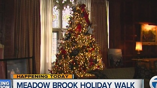 Meadow Brook Holiday Walk - Video