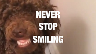 Prepare for Happiness on World Smile Day - Video