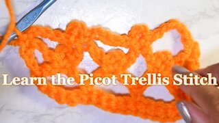 How to Crochet the Picot Trellis Stitch [ Beginner Friendly ]