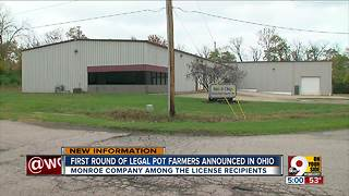 Ohio announces its first legal pot farmers - Video