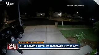Ring camera  captures masked prowlers casing Wesley Chapel neighborhood - Video