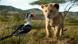 Disney's The Lion King Soundtrack Features New Original Song From Elton John