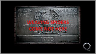 The New World Order - Weaving Spiders Come Not Here