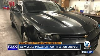 Search for hit and run driver continues
