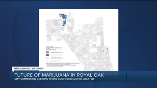 Royal Oak city commissioners to vote on placement of marijuana businesses