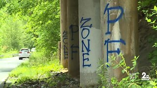 White nationalist graffiti in Harford County