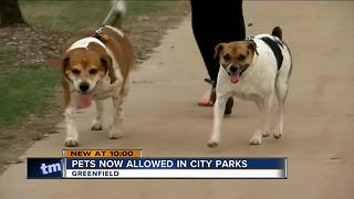 Greenfield lifts ban on dogs in city parks - Video