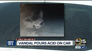 Acid poured over vehicle, tires slashed in San Tan Heights - Video