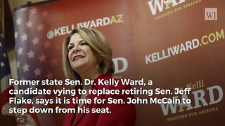 Arizona Senate Candidate For Flake's Seat Says It's Time For McCain To Step Down - Video