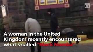 "Woman Takes Video of ""Black Mamba"" Zombies Invading British Streets - Video"