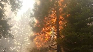 Firefighters Battle Minerva Fire in Northern California - Video