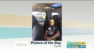 Tuesday's Picture of the Day - Video