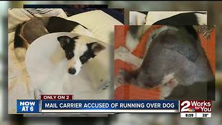 Mail carrier accused of rolling over dog on private property - Video