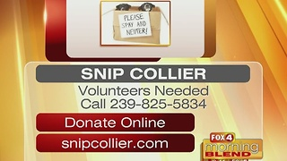 Snip Collier 1/10/17 - Video