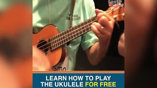 Free ukulele lessons in Tampa Bay? Where you can learn how to play - Video