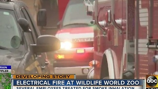 Crews battle electrical fire at Wildlife World Zoo - Video