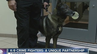 K-9 Crime Fighters: A unique partnership - Video
