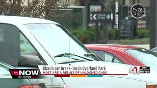 Car break-ins are on the rise in the metro - Video