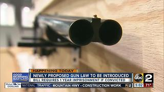 New gun law to be introduced requiring 1 year minimum sentence for illegal handguns - Video