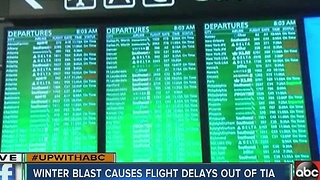 Winter blast up North causes flight delays at TIA - Video