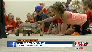 Non profit will bring gators, wild animals to your school or party - Video