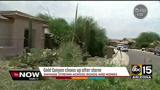 Downburst winds likely caused Gold Canyon damage - Video