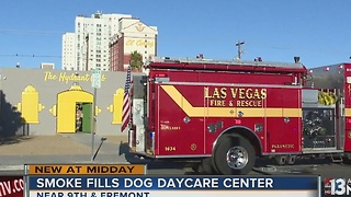 Fire scare at downtown dog daycare center - Video