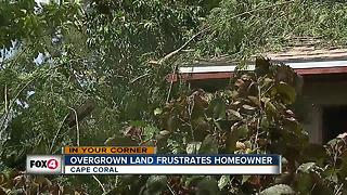 Cape Coral woman fed up with overgrowth