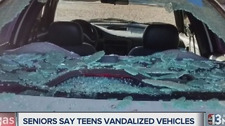 Teens terrorizing senior citizens by vandalizing cars with rocks