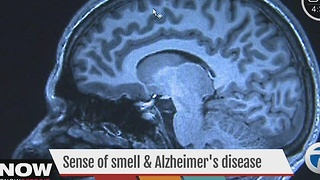 Sense of smell and Alzheimer's - Video