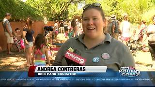 Reid Park's hosts Mud Day educating kids on sun protection - Video