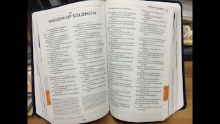 Catholic Bible - read along with me - Wisdom Chapters 1-2
