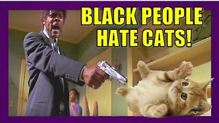 BLACK PEOPLE HATE CATS!