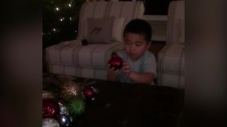 """Little Boy's Christmas Tree Decorating Fail"""