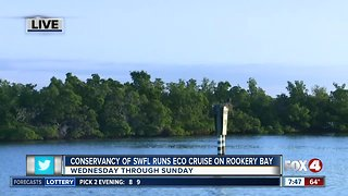 Conservancy of Southwest Florida runs eco-cruises out of Rookery Bay - 7:30am live report