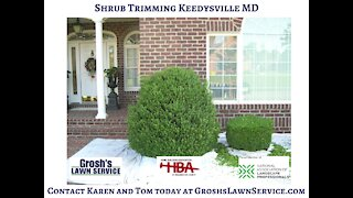Shrub Trimming Keedysville MD Landscaping Contractor