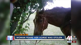 Woman in Olathe believes her horse was stolen - Video