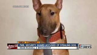 Former security guard accused of stealing Las Vegas family's dog - Video