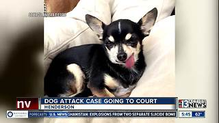 Dog attack case going to court - Video