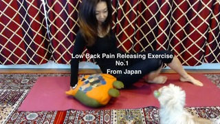 Low Back Pain Releasing Exercise 01 - Acute pain - Video