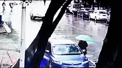 Pedestrian narrowly escapes death after tree falls down behind her