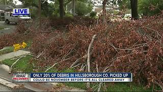 Only 20 percent of debris in Hillsborough Co. picked up - Video