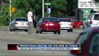 Pedestrian deaths on the rise in Tampa - Video