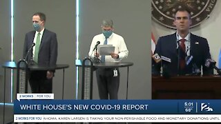White House's new COVID-19 report