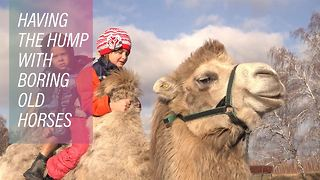 Cool as a camel? Siberia's strangest farm - Video