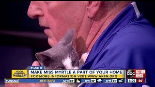Oct. 8 Rescues in Action: Make Miss Myrtle new family member - Video