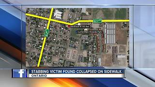 Stabbing victim found collapsed on sidewalk - Video