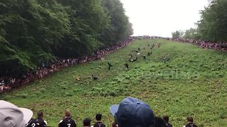 Cheese rolling gets underway in Gloucestershire