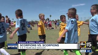 Fouhy's Small Stars: Scorpions soccer match - Video